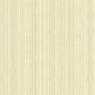 Striped Pastel Strings Wallpaper Beige R4874