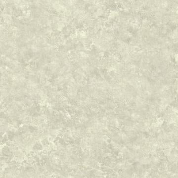 Painted Textures Wallpaper Grey and White R4776
