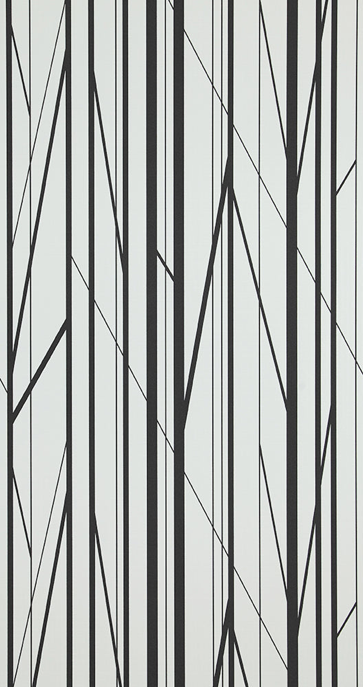 Black & White Modern Striped Bedroom Wallpaper R5364