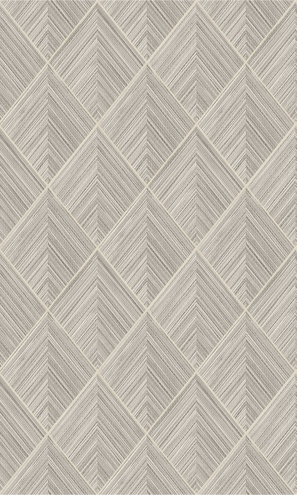 Taupe Grey Geometric Illusion R5647