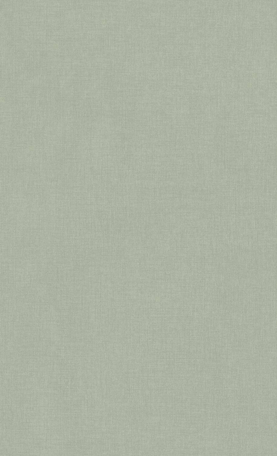 Light Grey Basic Texture Vinyl Wallpaper C7369. Grey Wallpaper. Vinyl wallpaper. Commercial wallpaper. Neutral wallpaper. Beige wallpaper. Textured wallpaper.