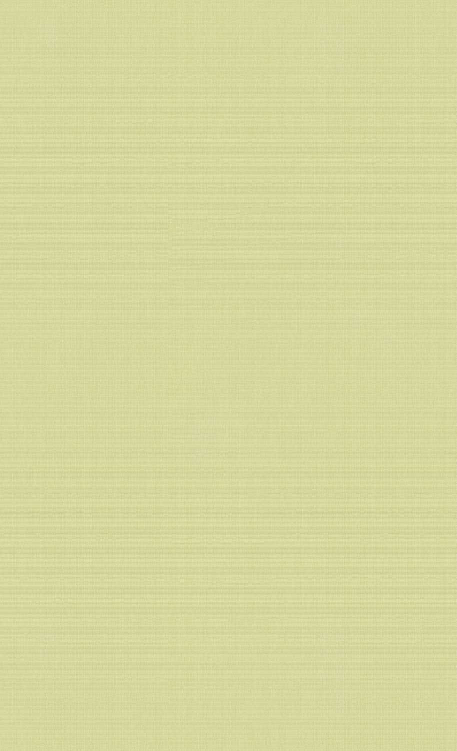 Minimalist Olive Green Wallpaper C7287 | Commercial and Hospitality