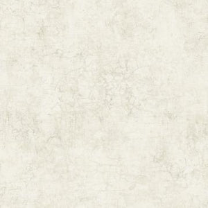 Offwhite Minimalist Faux Concrete Wallpaper R4828 | Luxury Home Design