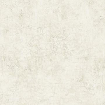 Minimalist Concrete Faux Finish Wallpaper Beige R4828