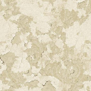 Floral Plaster Wallpaper Beige and White R4791