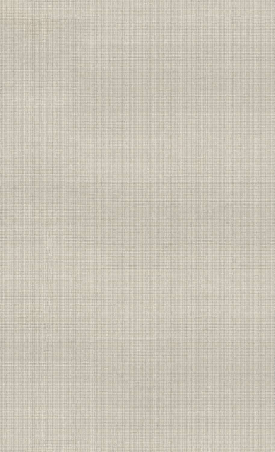 Minimalist Powder Gray Wallpaper C7280 | Commercial and Hospitality