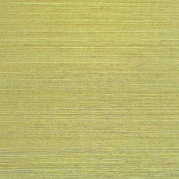 Ramie Forest Green Grass-cloth Wallpaper R1964