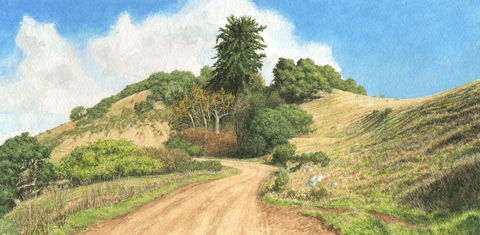 Along the Old coast Road-Giclee on Paper