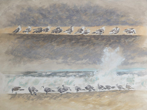 Card-Seagulls-by Edmund Moody