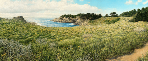 View of Headlands Cove- Giclée on Canvas