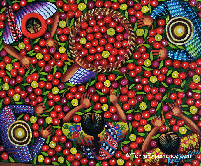 Angelina Quic Oil Painting - Mayan Apple Picking Overhead  (P-M-AQ9-19o)