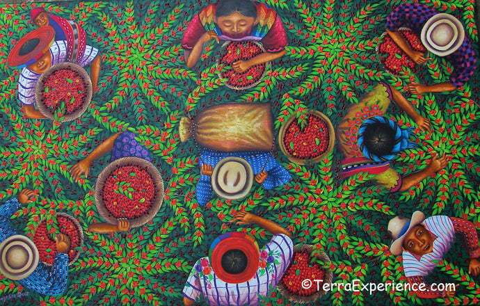 Angelina Quic Large Oil Painting - Mayan Coffee Harvest Overhead  (P-VL-AQ-19B) 25
