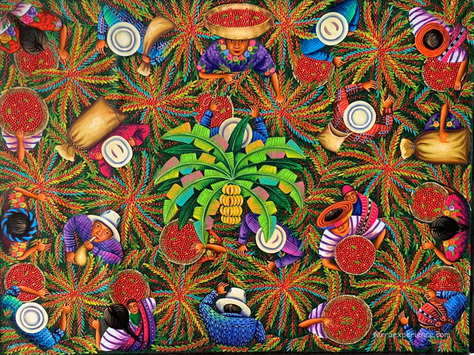 Angelina Quic Large Oil Painting - Mayan Coffee Harvest Overhead  (P-L-AQ-20R-F ) 30