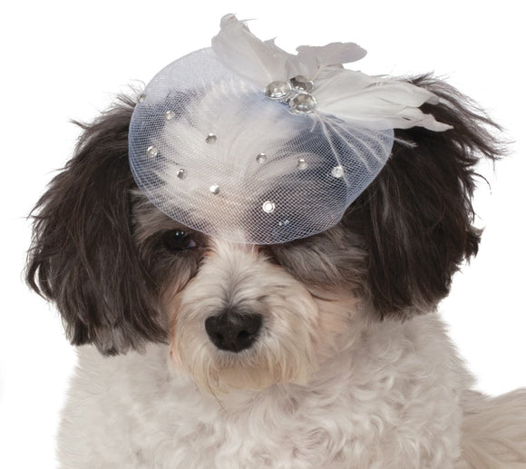 Fancy Formal Hat Pet - Size S-M