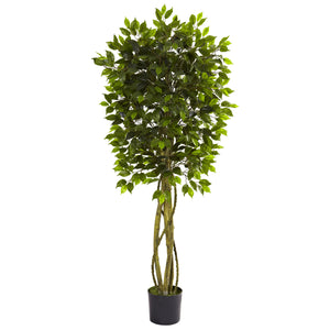 5.5' Ficus Tree UV Resistant PS5380 (Indoor/Outdoor) - Phoenix Silk Flower Marketplace