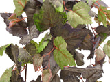 "Frosted GRAPE IVY Leaves 34"" Hanging Bush Artificial Silk Greenery 5364FR - Phoenix Silk Flower Marketplace"