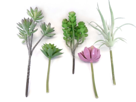 5 Picks Succulent Assorted Artificial Plastic Plants 60007 - Phoenix Silk Flower Marketplace
