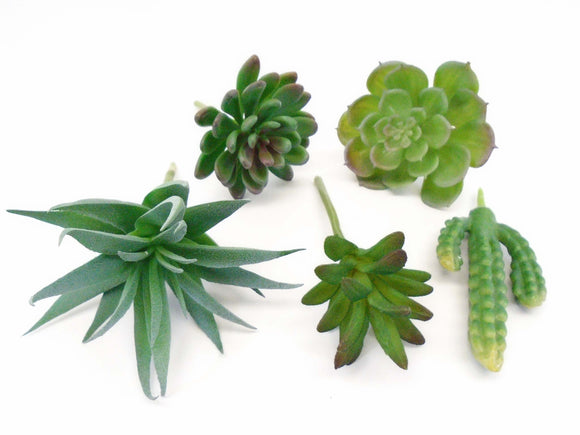 5 Picks Succulent Assorted Artificial Plastic Plants 60008 - Phoenix Silk Flower Marketplace