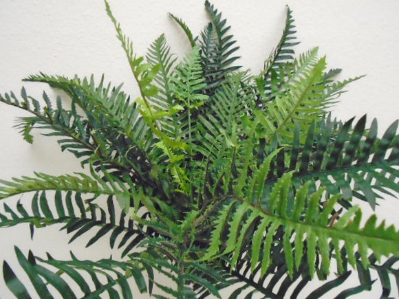 RIVER Fern Bush 30 Leaves Artificial Silk Plant Greenery 7601GR - Phoenix Silk Flower Marketplace