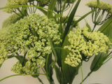 "Queen Anne's Lace Bush 10 Artificial Flowers 18"" Bouquet 980 - Phoenix Silk Flower Marketplace"