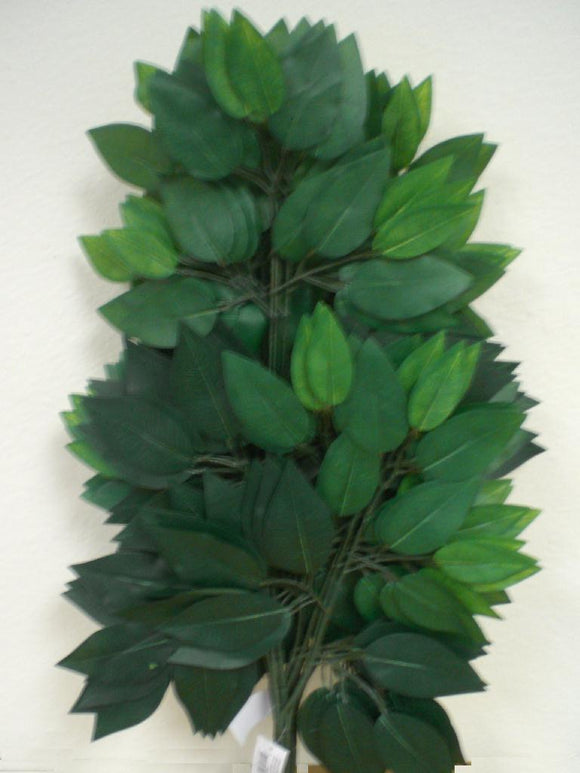 12 Sprays Ficus Leaves 23