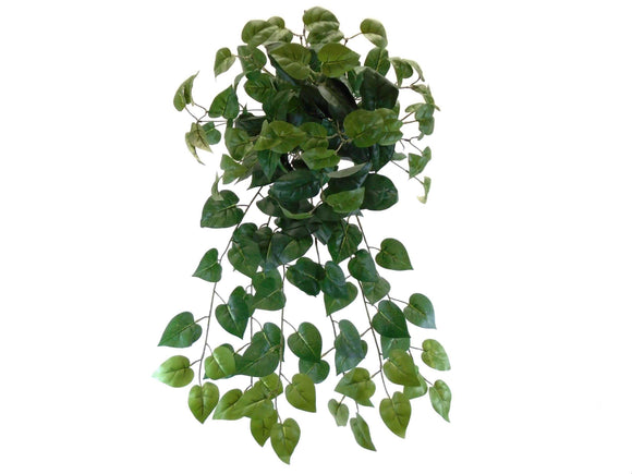 PHILO Leaves Hanging Bush 25