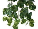 "POTHOS Leaves Hanging Bush 25"" Artificial Silk Plants Greenery 8019 - Phoenix Silk Flower Marketplace"