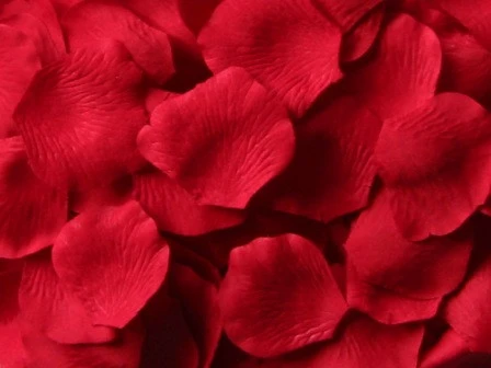 1000 Rose Petals RED High Quality Artificial Flowers PT433