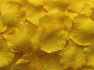 1000 Rose Petals YELLOW High Quality Artificial Flowers PT412