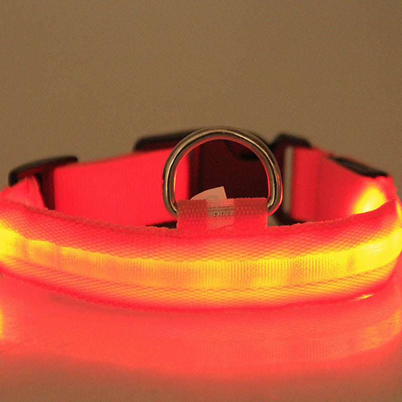 Glowing Dog Collar
