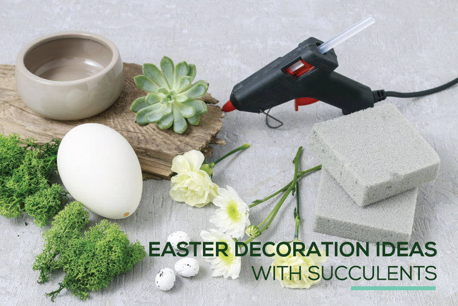 Stunning Easter Decoration ideas with Succulents