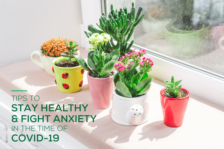 Tips to stay healthy & fight anxiety in the time of COVID-19
