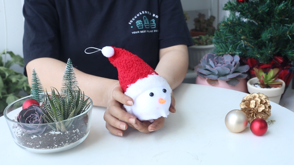 How to make this DIY Christmas Succulent Snowman