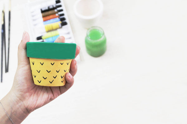 Painted Succulent Clay Pot DIY Tutorial