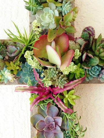Easter succulent Cross home decoration ideas