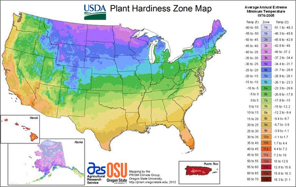 USDA hardiness zone, Hardiness Zone Map for Succulent Plants