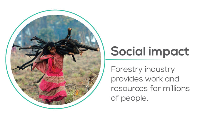 Planting trees impact to Social - forestry industry provides work and resources for millions of people