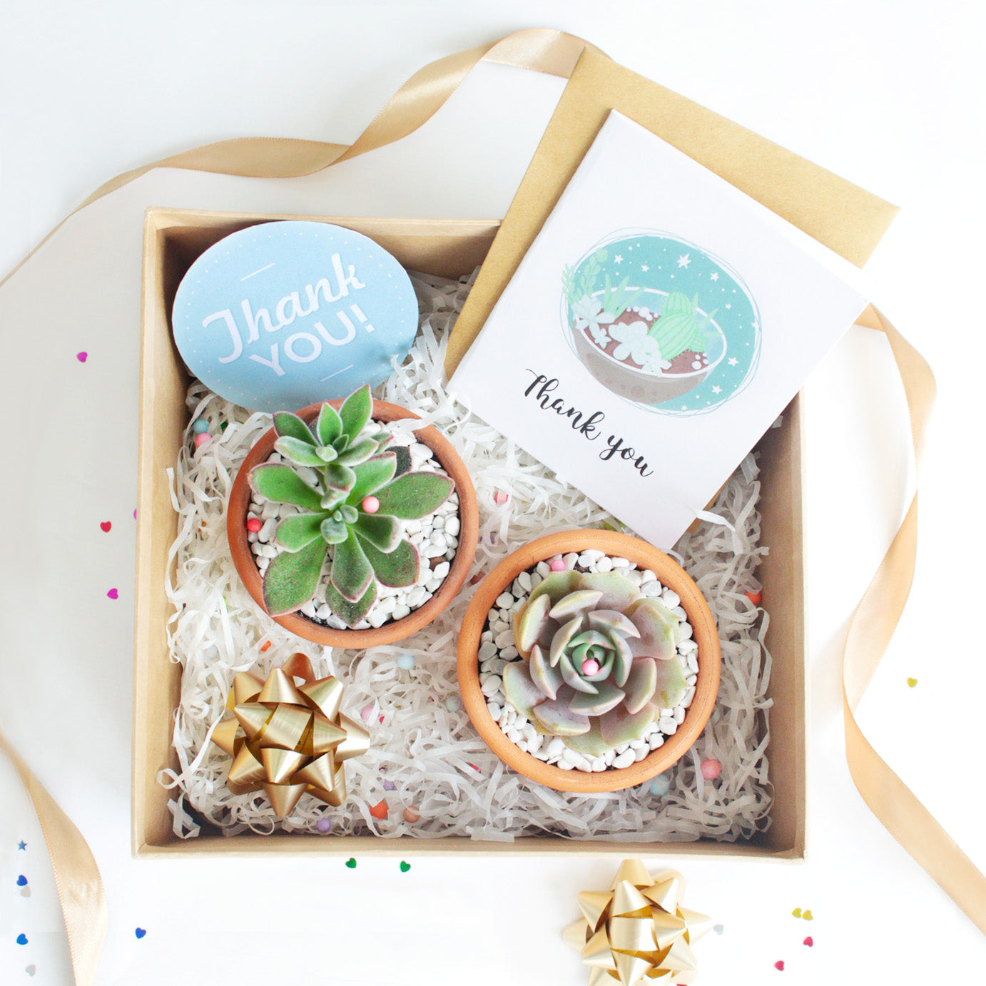succulent subscription, succulent subscription boxes, succulent monthly subscription, succulent monthly subscription, succulent subscription with pots, best succulent subscription box 2020, succulents for sale, succulent subscription clay pot