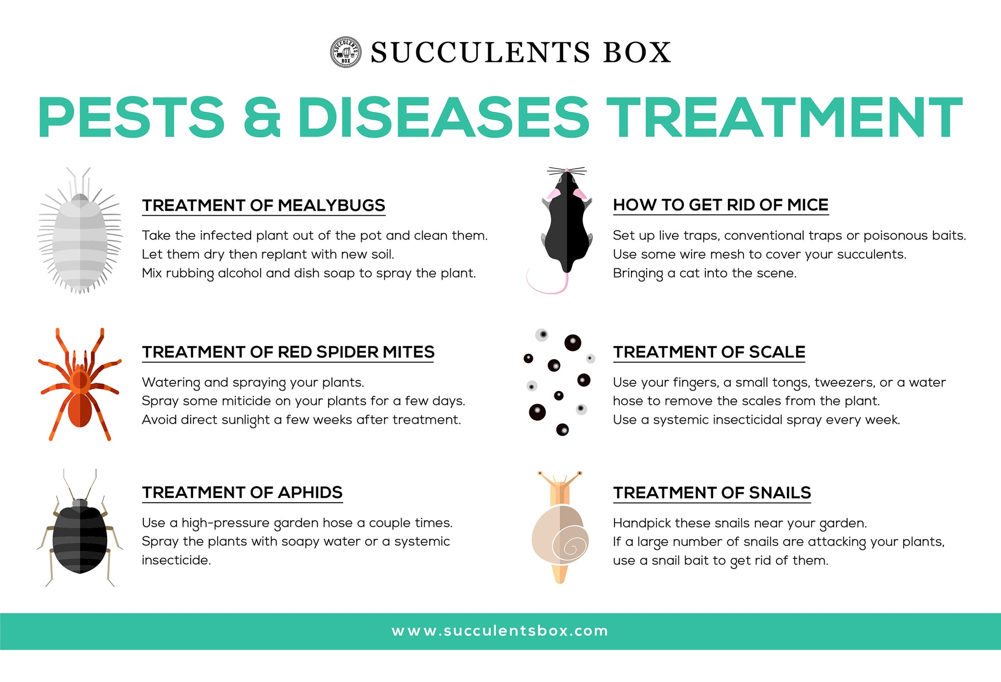 Pests and Diseases Treatment