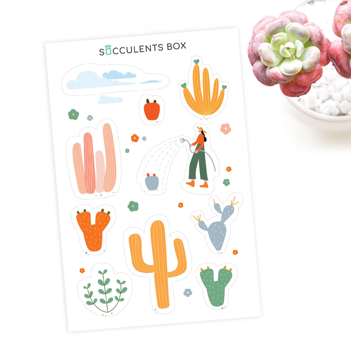 Succulent Planner Sticker for sale, succulent craft ideas, succulent gift ideas, cute plant stickers, decorative scrapbook sticker for sale, Cute Succulents Sticker