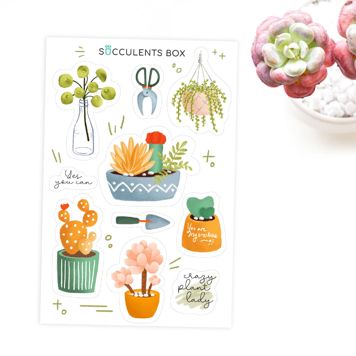 Succulent Planner Sticker for sale, succulent craft ideas, succulent gift ideas, cute plant stickers, decorative scrapbook sticker for sale, Plant Lady Sticker