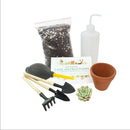 How to use gardening tool kit for growing succulent plants