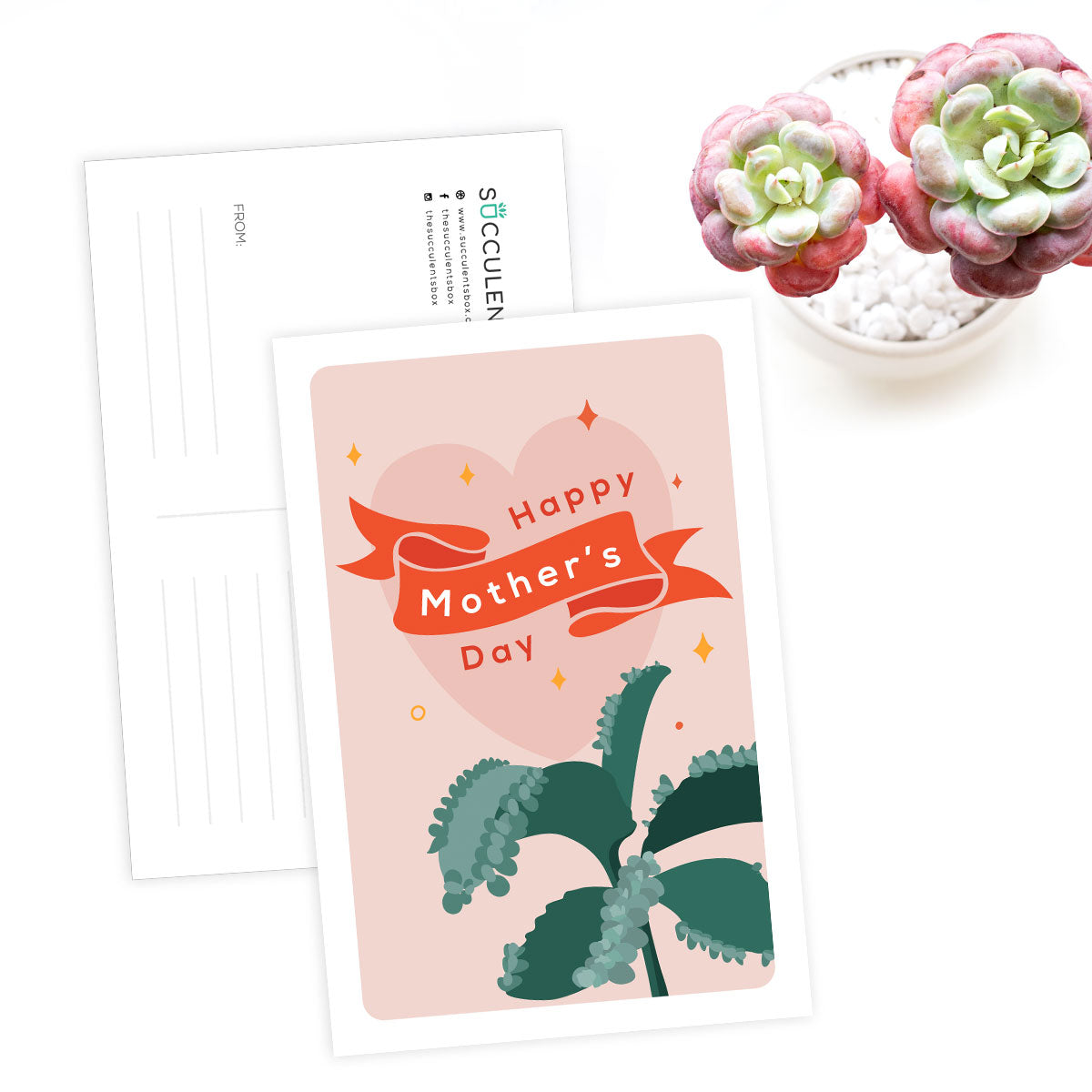 Succulent Happy Mother Day Card for sale, Succulents Greeting Card, Succulents Gift Ideas