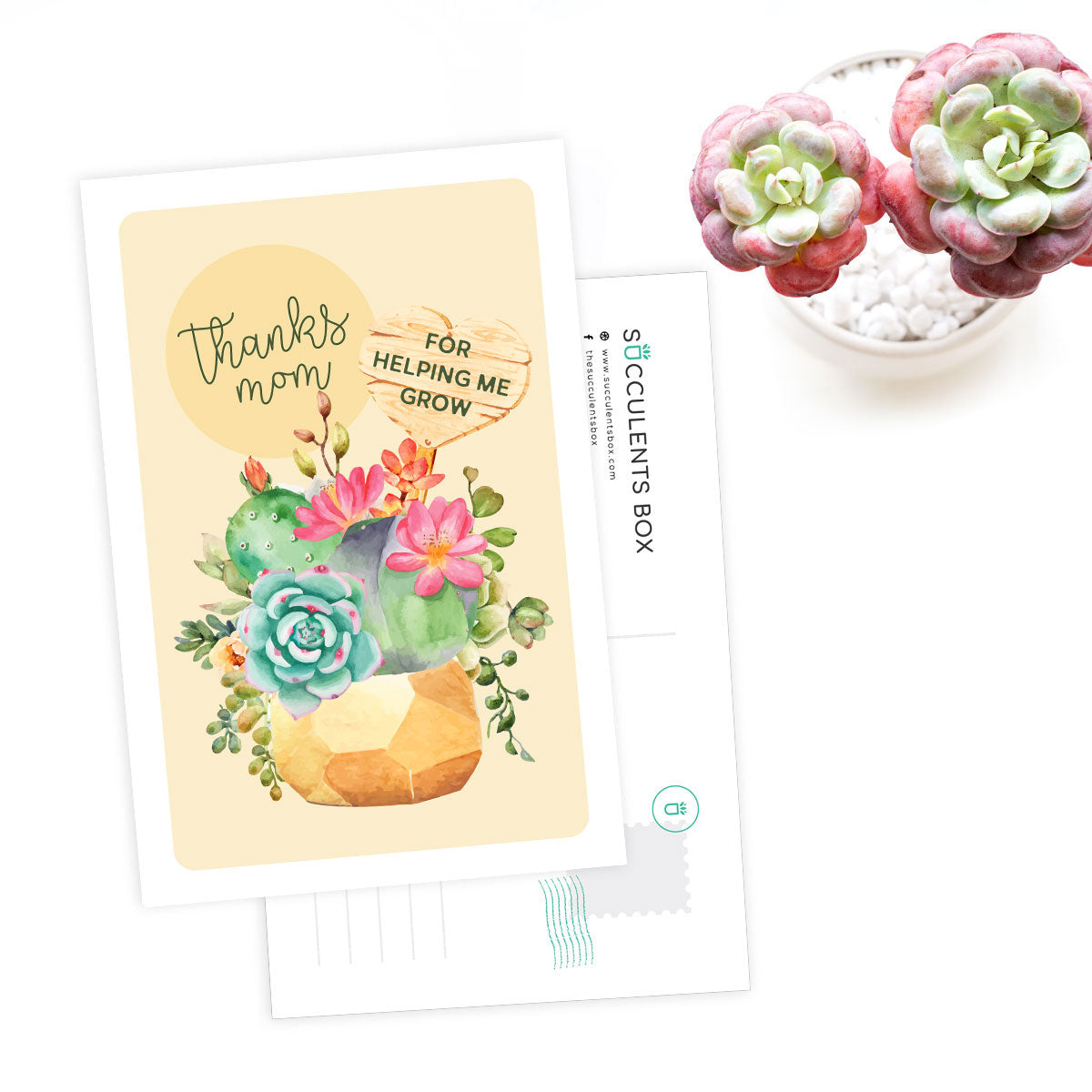 Succulent Happy Mother Day Card for sale, Succulents Greeting Card, Succulents Gift Ideas, THank Mom Card