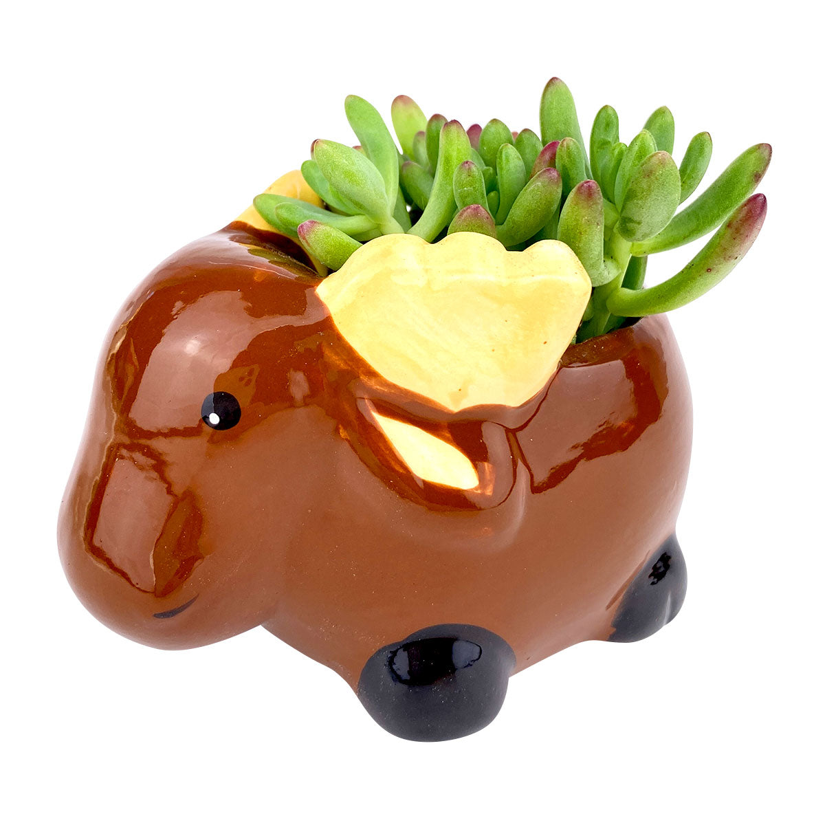 Ceramic Moose Pot for sale, Cute Ceramic Succulent Pot, Moose Planter Decor, Craft Supplies, Succulent Gift Ideas, Moose Succulent Pot