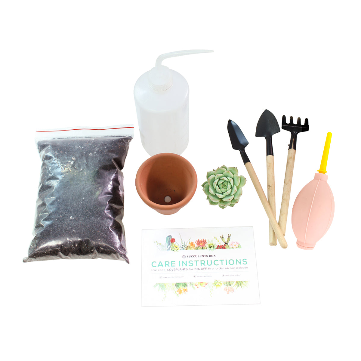 Succulent Beginner Kit for sale, Succulent Plant Starter Kit for sale, Succulent Gift for Beginners, Succulents Gift Ideas