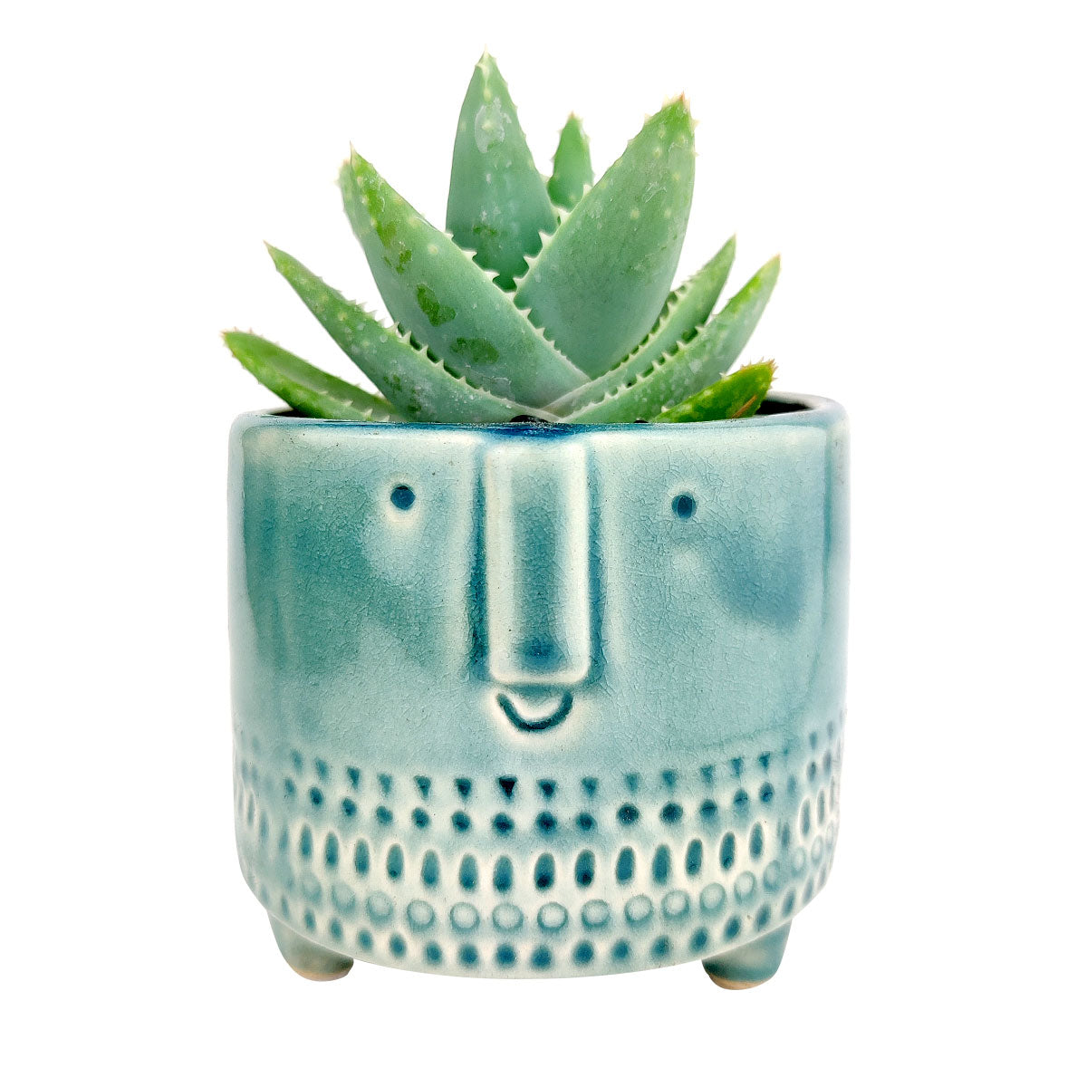 Crackled Glazed Gray Pot for sale, Minimalism Design Ceramic Pots for succulent plant, Medium ceramic succulent pot, Home decor Office decor, Round ceramic pot, Face ceramic pot for sale