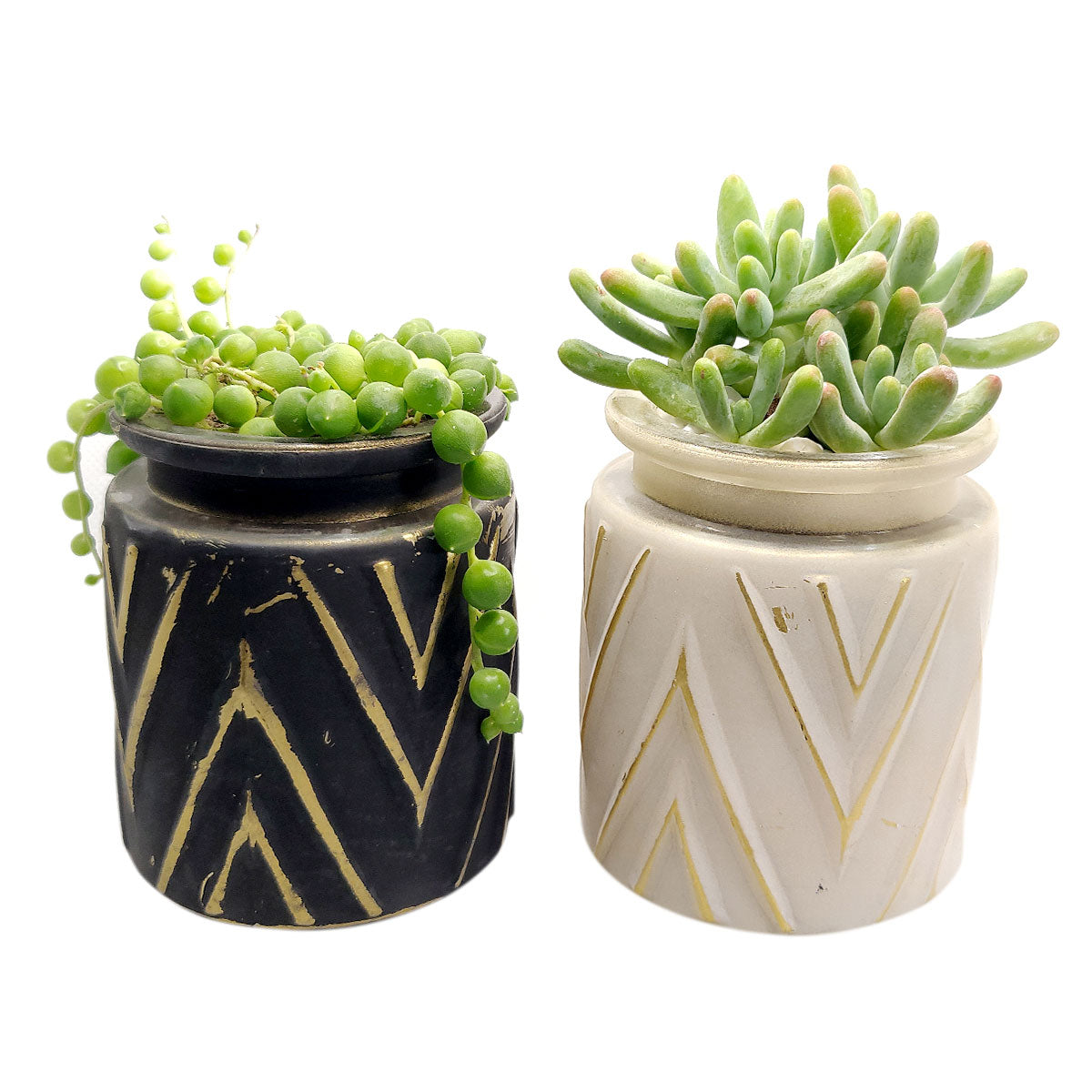 Pot for sale, Mini pot for succulent, Succulent pot decor ideas, Chevron Pattern pot pack, Flower pot for sale, glass pots for planting, succulent gift for holiday