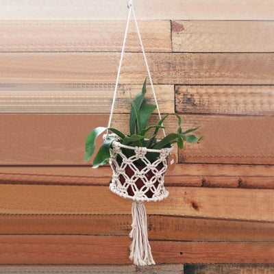 Macrame for Airplants