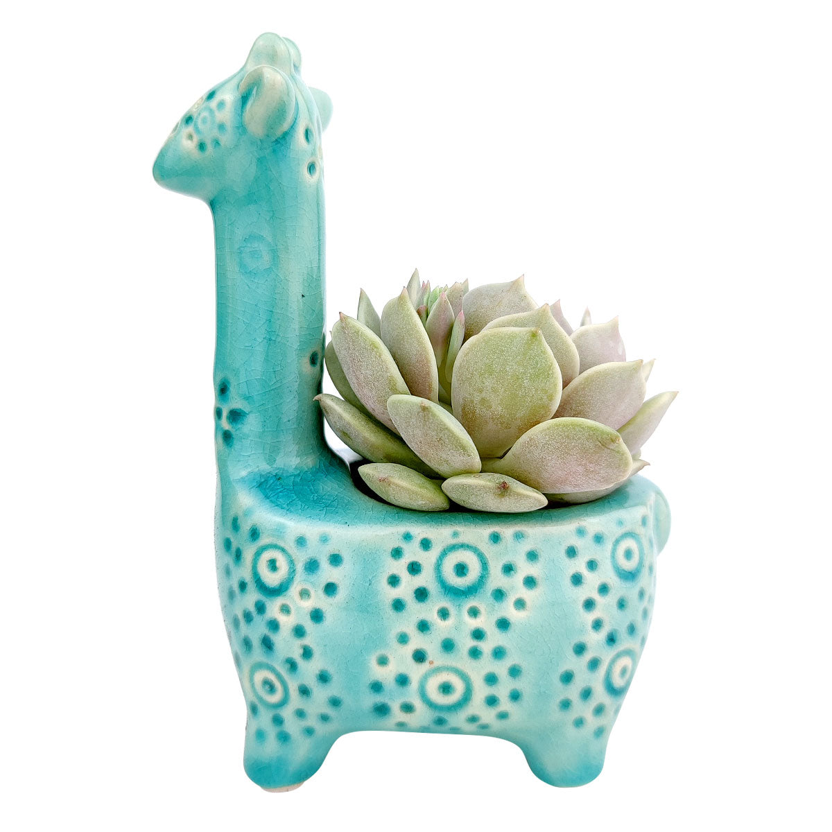 Blue Giraffe Ceramic Pot for sale, Ceramic mini pot for succulents and flowers, Ceramic Giraffe Flower Pot, Cute succulent planter, ideal gifts for mom, Giraffe Planters for sale